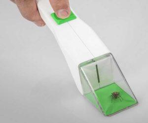 Insektenfänger
