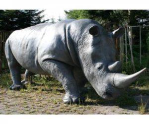 Nashorn lebensgroß