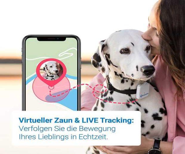 gps tracker halsband für hunde und katzen
